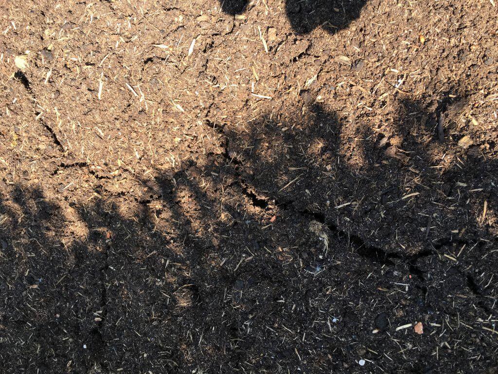 Trockene Erde Risse